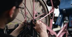 Sector Spotlight: Bicycle Shop
