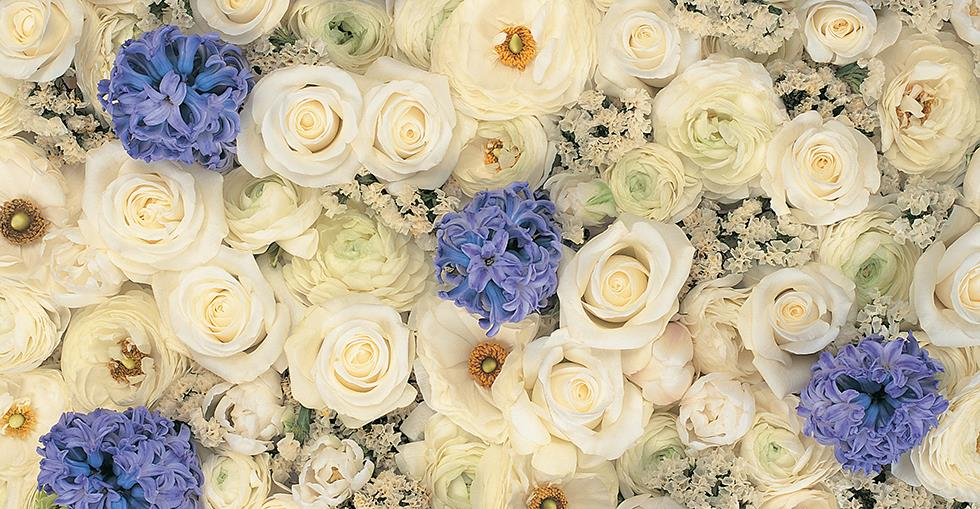 Send A Vibrant Bouquet Of Beautiful Roses