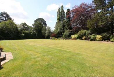 grounds maintenance landscaping business - 4