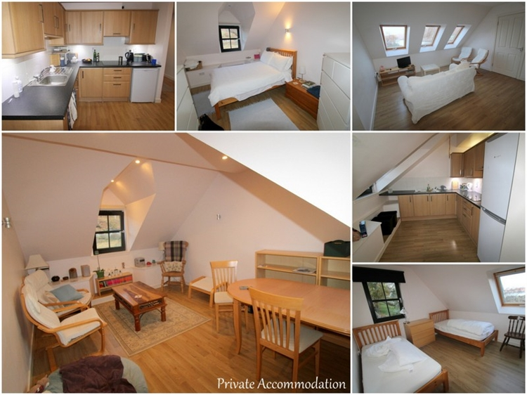 charming inn bunkhouse set - 14