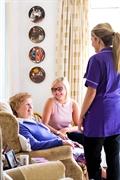 established home care franchise - 1