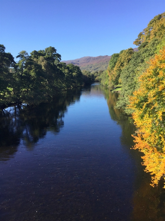 exceptional 6-bedroom hotel inverness-shire - 15