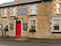 red cat pub saint - 1