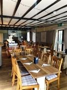 pub tenancy the bonny - 3