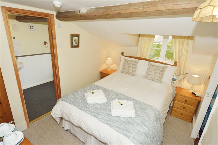 thatched cottage bed breakfast - 6