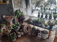 florists giftware cleadon - 2