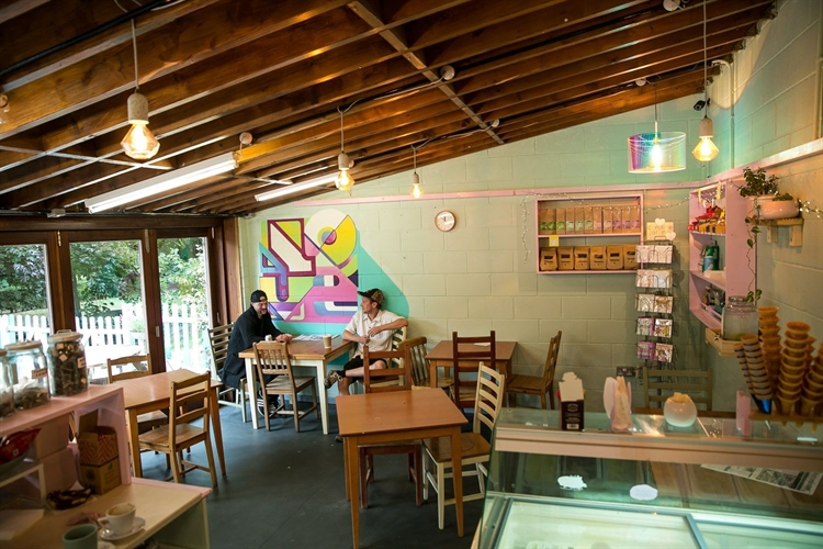 thriving beautiful park cafe - 8