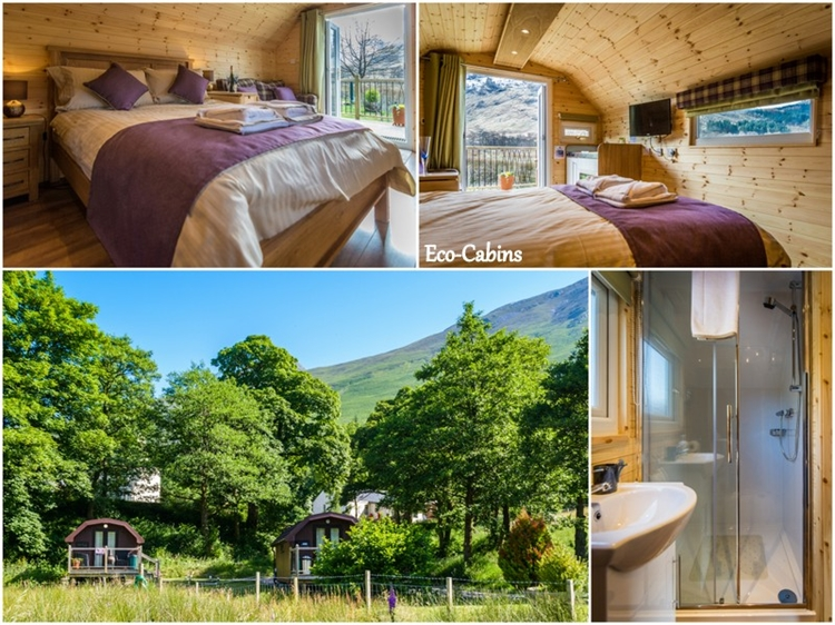 magnificent holiday park bunkhouse - 5