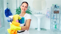 well established domestic cleaning - 2