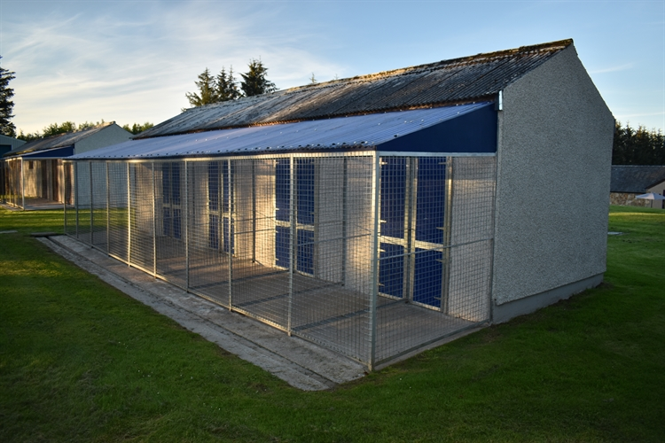 kennels cattery huntly - 5