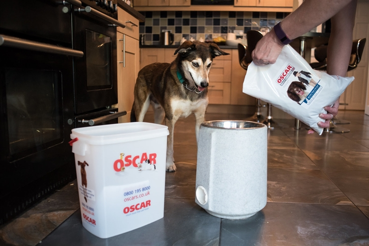 pet food home delivery - 4