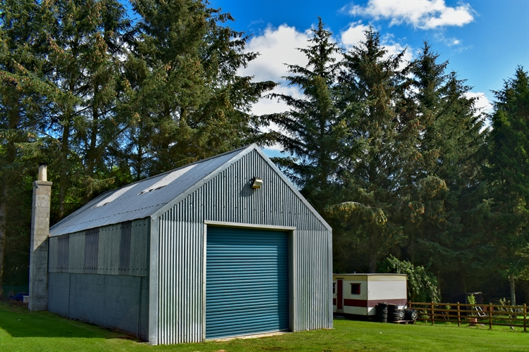 kennels cattery huntly - 8