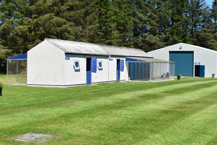 kennels cattery huntly - 4