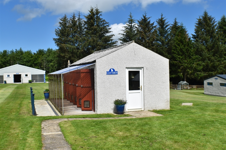 kennels cattery huntly - 7