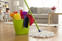 well established domestic cleaning - 1