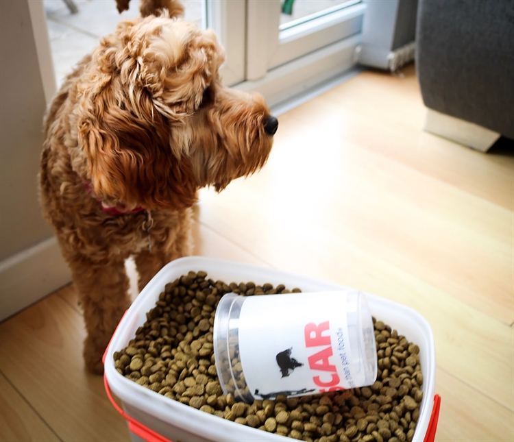 pet food home delivery - 5