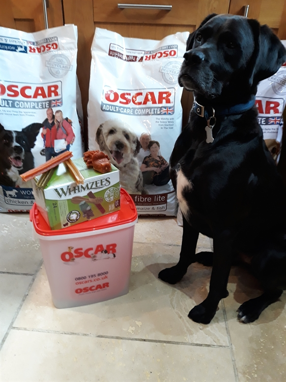 pet food home delivery - 9