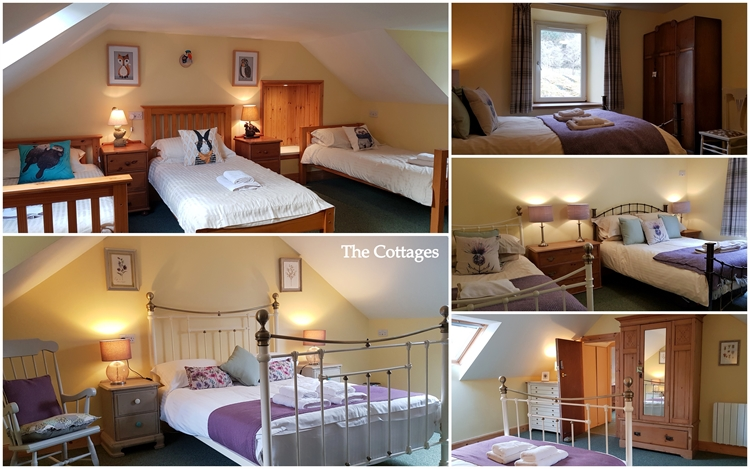 magnificent holiday park bunkhouse - 9