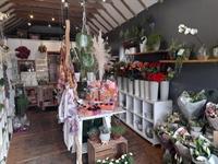 florists giftware cleadon - 3
