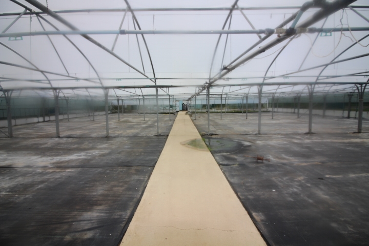 wholesale nursery with tied - 4