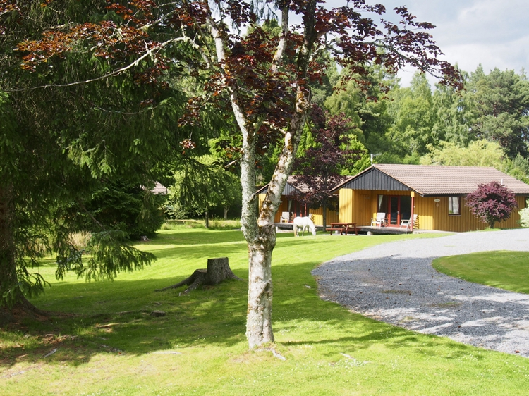 outstanding desirable hotel chalet - 8