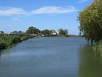 fen lane carp fisheries - 1