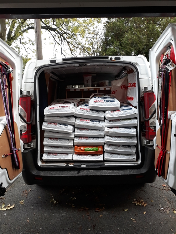 pet food home delivery - 13