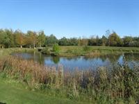 established fishery leisure park - 3
