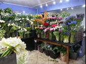 Interflora Florist For Sale